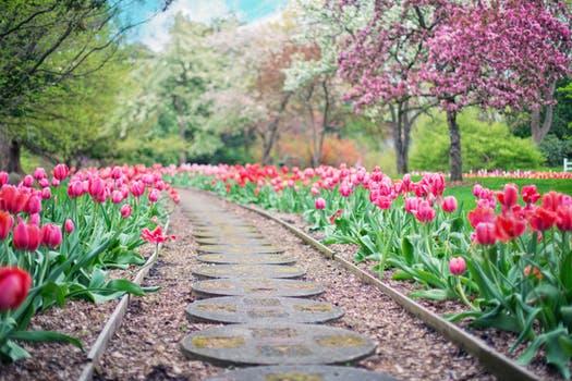 Merveilleux 3 Advantages Of Keeping A Great Garden